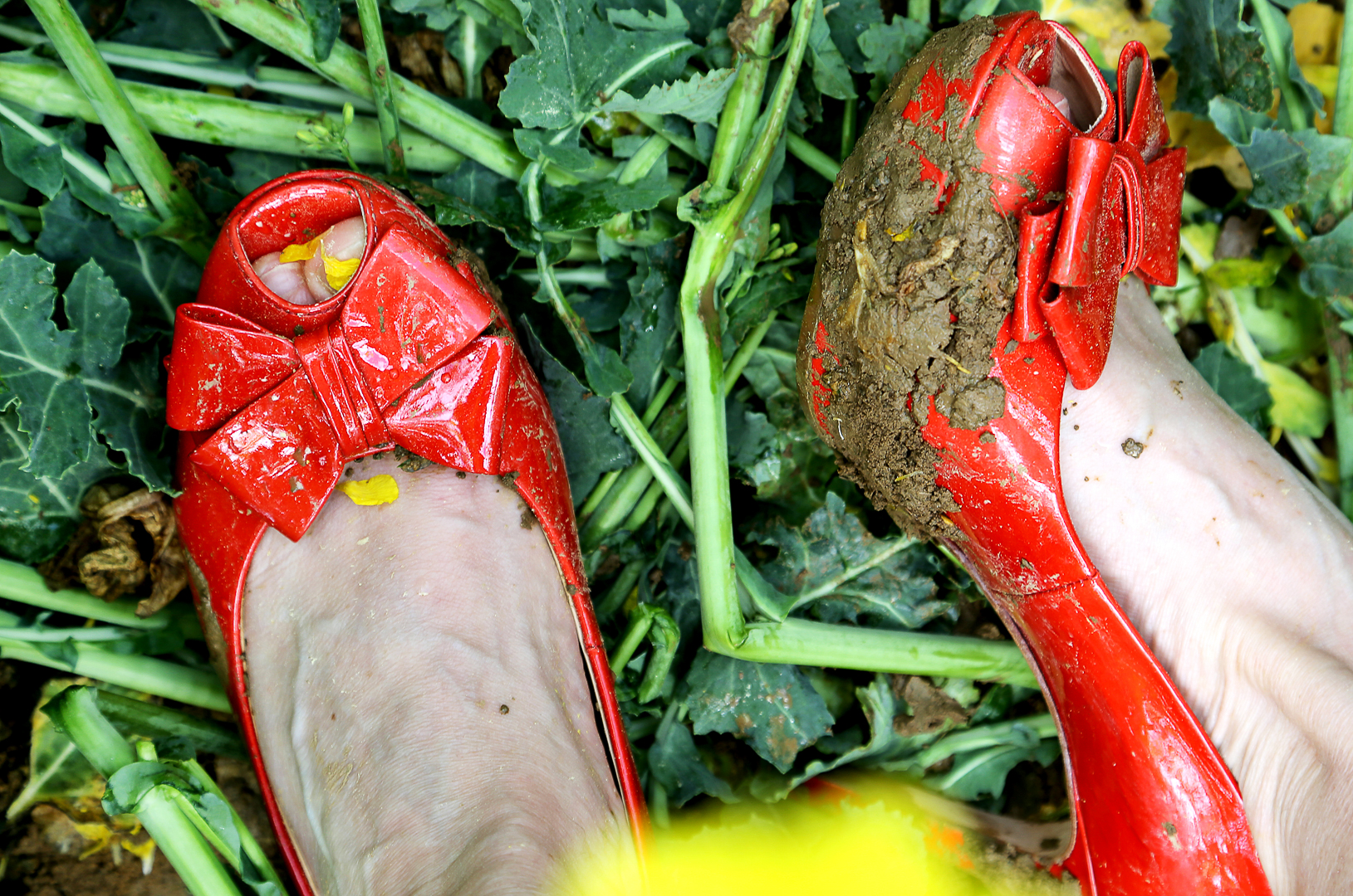 My Mother´s Shoes, Vienna 2015